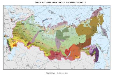 """Легенда. Карта """"Зоны и типы поясности растительности России и сопредельных территорий""""."""