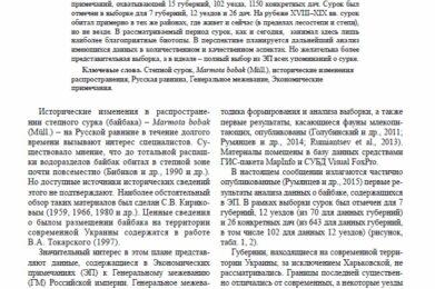 Румянцев_Статья_5